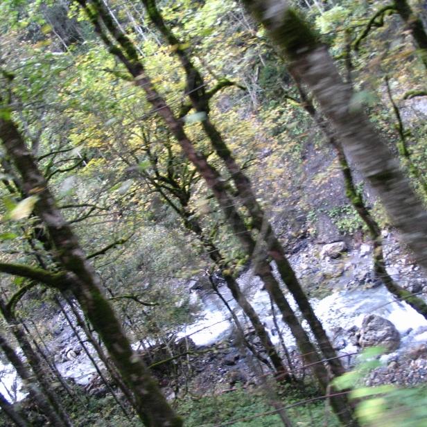 Switzerland, September 2006