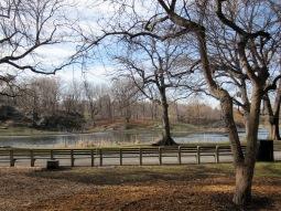 Upper East Corner of Central Park, NYC